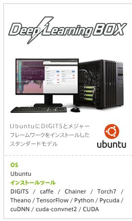 dl-box_lineup